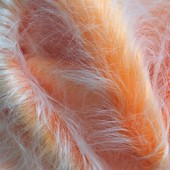 Orange and white faux long-pile fur id-223